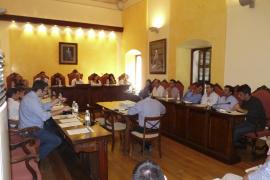 El Partido Popular expulsa a los siete ediles de Manacor fieles al alcalde Antoni Pastor