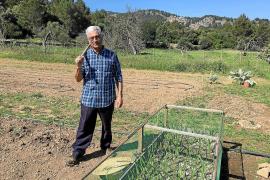 Toni Frau Ferrer: «Horts Solidaris tiene 28 socios que cultivan sobre todo hortaliza»