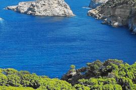 Madrid prevé aprobar la creación de la reserva marina de Tramuntana