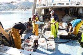 pesca de langosta