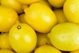El limón, un cítrico con importantes propiedades antioxidantes