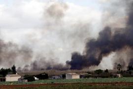 Alarma por un gran incendio en el parque natural de s'Albufera