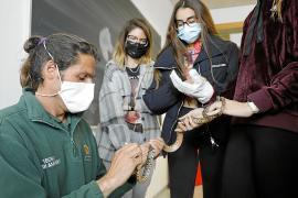 Los estudiantes descubrieron de primera mano las serpientes, las trampas y los ratoncillos que se usan como cebo