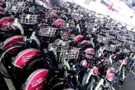 Bicipalma pasa de los 22.000 a poco más de 2.000 usuarios