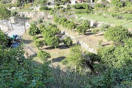 El avance del nuevo planeamiento urbanístico de Estellencs no gusta ni al alcalde