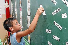 La Universitat balear elabora un informe en defensa de la escuela en catalán