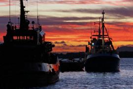 Barcos en el puerto de Alcúdia