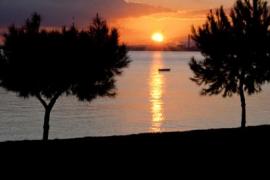 Playa de Alcanada en Mallorca