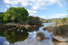 Parc natural de Mondragó en Mallorca
