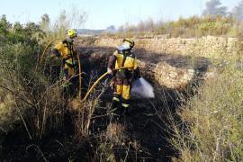 Un total de 68,28 hectáreas de superficie se han visto afectadas en Baleares hasta el 1 de junio