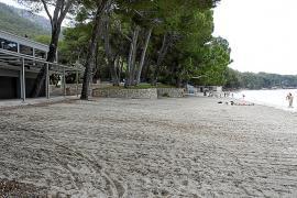Costas deniega el permiso a dos de las clásicas terrazas de la playa de Formentor