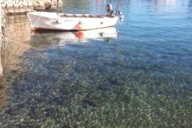 Cala Figuera de Mallorca