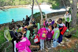 Un centenar de alumnos de Calonge reforestan el parque de Mondragó
