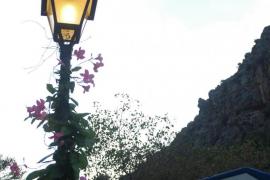Farola con flores
