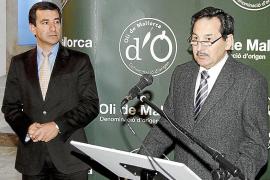 PALMA PRESENTACION DE L OLI NOVELL DE LA DENOMINACIO D ORIGEN FOTO M