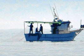 La flota sale a pescar 'jonquillo' sin la autorización de Bruselas