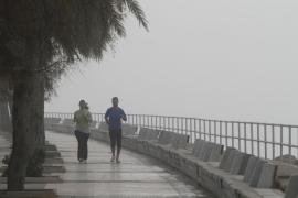 Balears permanecerá este sábado en alerta amarilla por fuerte viento y fenómenos costeros