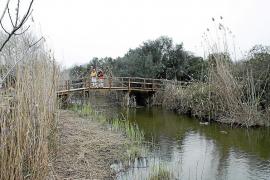 El Parc de s'Albufera cumple 25 años