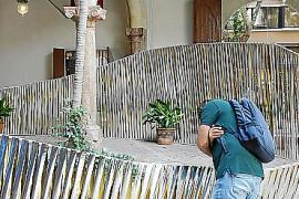 Regresa Insòlit, el festival de intervenciones arquitectónicas en los patios de Palma