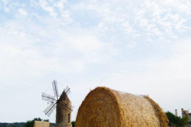 Primer premio del II concurso de fotografía digital Ultimahora.es y Foto Ruano