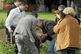 """PALMA - """"OPERACION SCALA """" - ANTONIA ORDINAS ENTREGA AL JUEZ 240.000 EUROS QUE ESCONDIA EN SU JARDIN."""