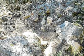 El vertedero ilegal de bidones del pinar de Cala Agulla ha sido limpiado