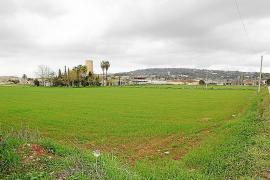 La urbanización de s'Hort d'en Roig se desvincula de la aprobación del PGOU