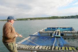 El Govern autoriza la piscifactoría de Portocolom pese a la oposición unánime del Ajuntament