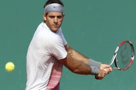 Del Potro y Murray, bajas en Roland Garros