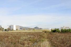 El Govern propone reducir el límite de protección de 15 humedales de Mallorca