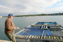 Los hoteleros muestran un rechazo total a la piscifactoría de Portocolom