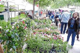 El Firó llena la ciudad de visitantes y de una variada oferta comercial