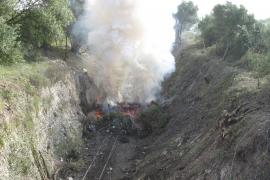 Los trabajos de limpieza de la maleza dejan ver las antiguas vías de la línea Manacor-Artà