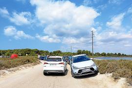 El GOB pide que se reubique el aparcamiento de Es Trenc a una zona «menos frágil»