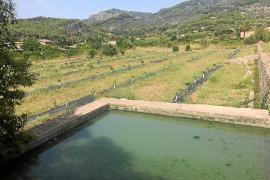La analítica confirma que el agua depurada para el riego de Sóller está contaminada