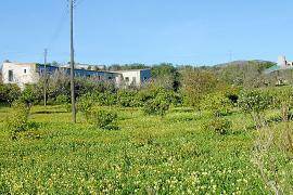El Govern declara de interés autonómico la construcción de una residencia en Sant Llorenç