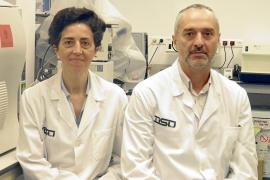 Nace el primer banco de piel, huesos y nervios para animales de España