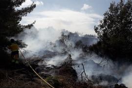 Baleares ha sufrido 55 incendios que han quemado 86,6 hectáreas hasta agosto