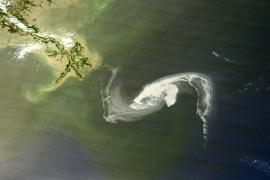 Florida declara el estado de emergencia por amenaza de marea negra