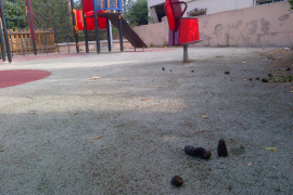 Heces de perro en parque infantil
