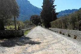 El Consell dará luz verde a la reforma de la carretera vieja de Lluc