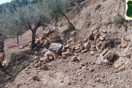 Investigan una destrucción patrimonial y natural en una finca privada de la Serra