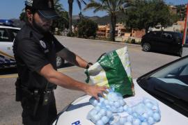 Sorprendido tras robar pelotas de golf en Camp de Mar para revenderlas