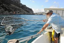 Retirados más de 4.000 kilos de residuos en playas y calas de Balears en junio