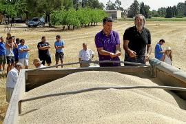 El calor del mes de junio permitirá recoger 60.000 toneladas de cereales