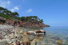 Fiestas populares de Sant Jaume en Port D'es Canonge