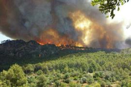 El fuego calcina de momento 800 hectáreas forestales  en Sa Coma Calenta