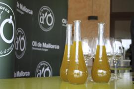 cata de aceite de oliva Oli de Mallorca DO