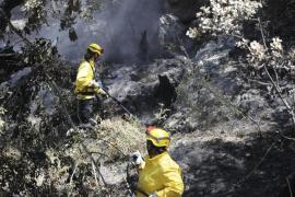 Las desoladoras imágenes del incendio en Andratx