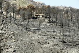 Controlado el incendio de Andratx tras quemar un total de 2.335 hectáreas